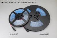 画像2: 24V SSG 2835テープLED 60LED/m 6200K 10m/20m