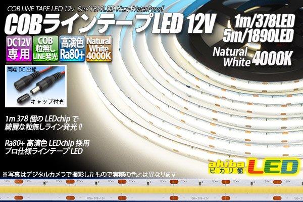画像1: COBラインテープLED 12V 4000K 1m-5m 高演色Ra80+ (1)