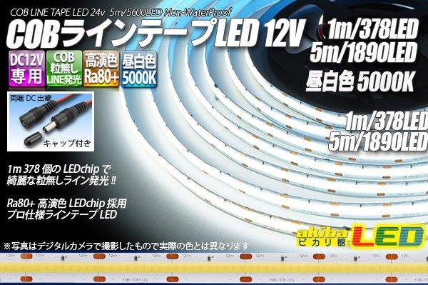 画像1: COBラインテープLED 12V 5000K 1m-5m 高演色Ra80+ (1)