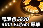 高演色5630 300LED/5m 電球色